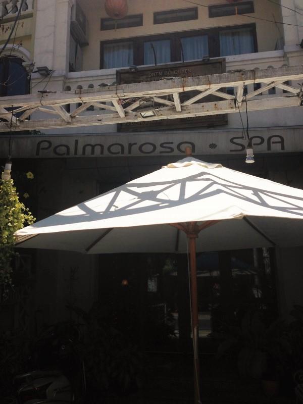 palmarosa (8)